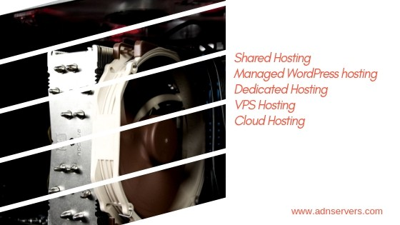 Best Hosting Service For Small Business